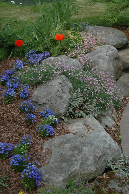 Garden Concepts, established in 1998, as a landscape design and landscape contracting company.